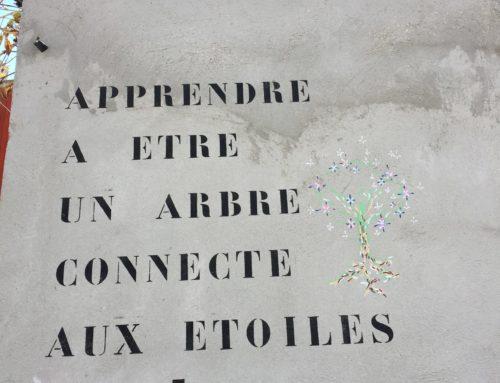 Heart of Life / Coeur de la vie: Day / Jour V